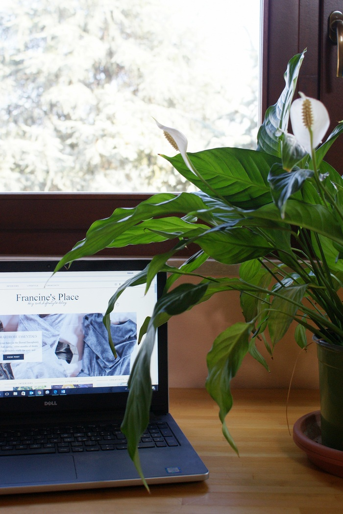 WELCOME TO THE NEW FRANCINE'S PLACE BLOG!