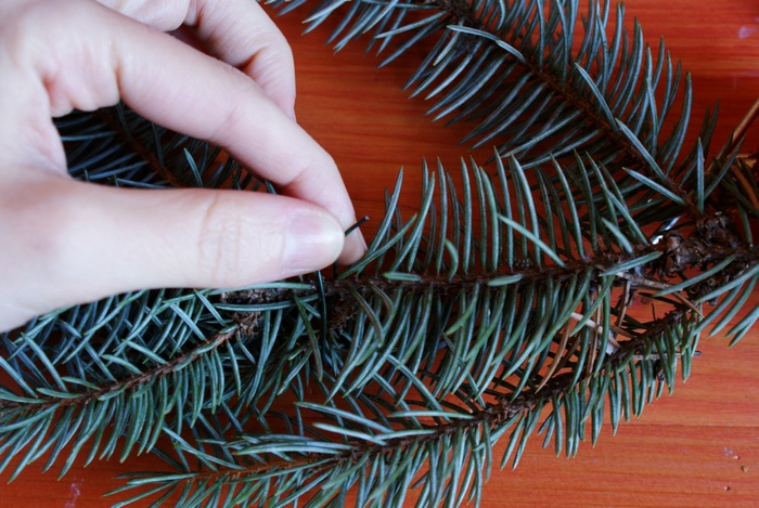 diy christmas wreath fir pine