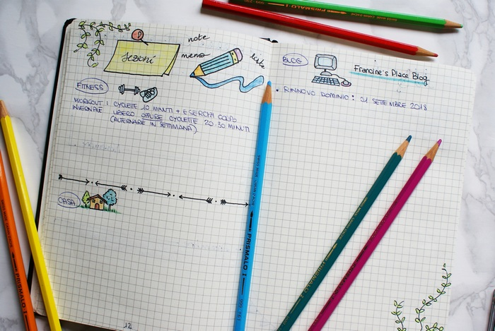 sections bullet journal idea francinesplaceblog
