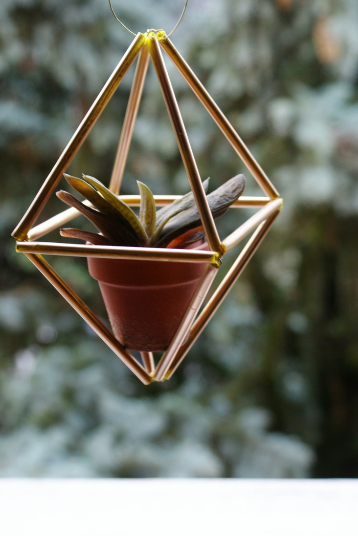 DIY HANGING HIMMELI PLANT HOLDER