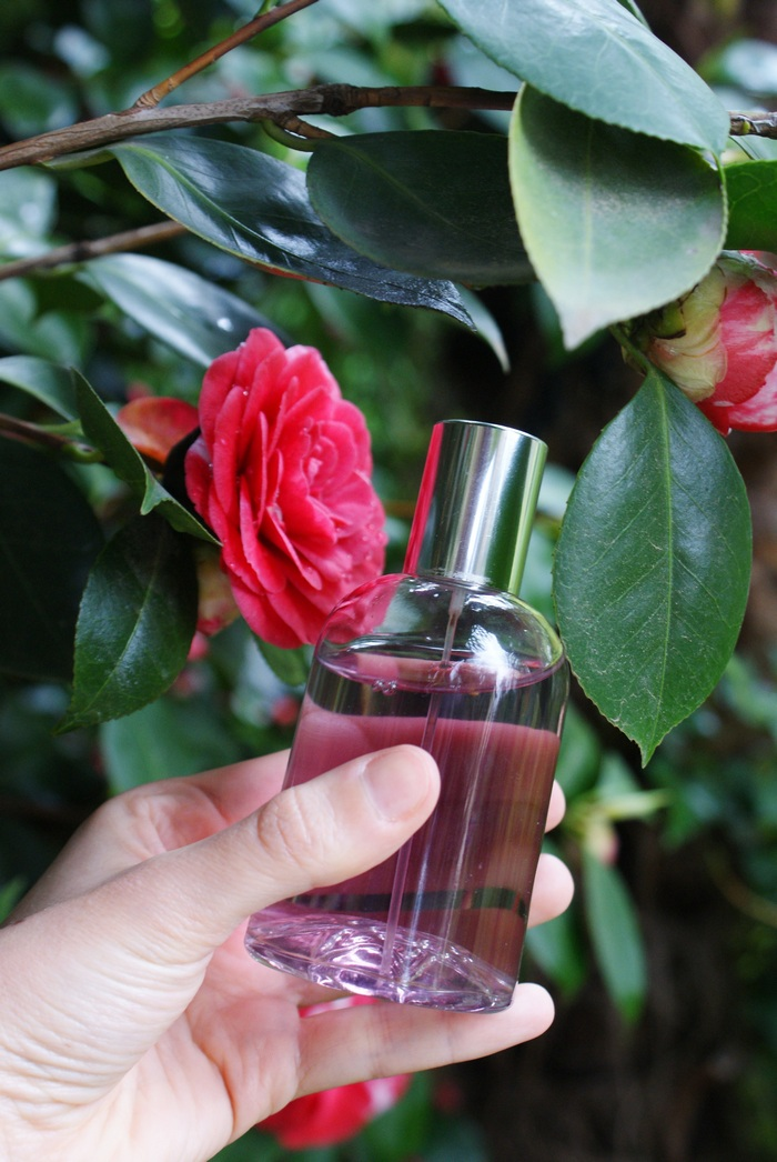 acqua camelia spray faidate diy