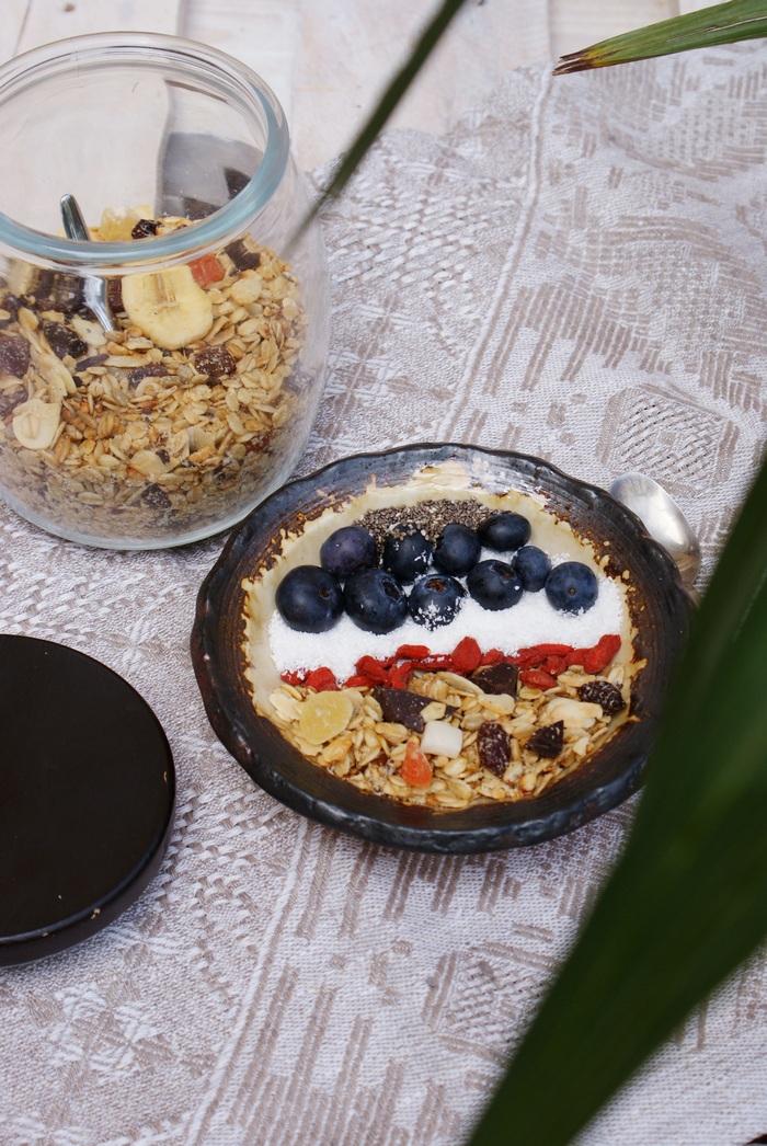 granola fruit chocolate recipe francinesplaceblog
