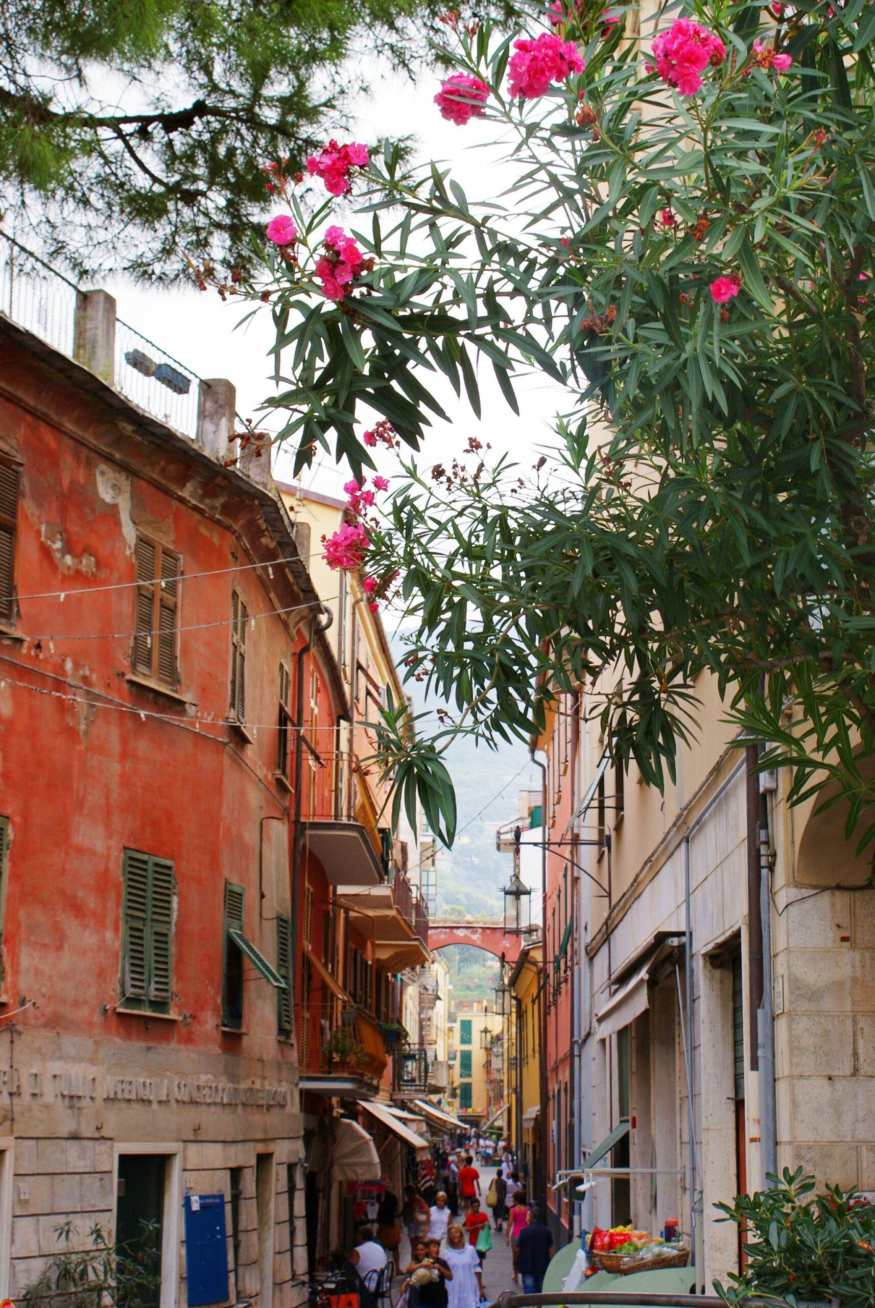 moneglia travel guide blogger francinesplaceblog