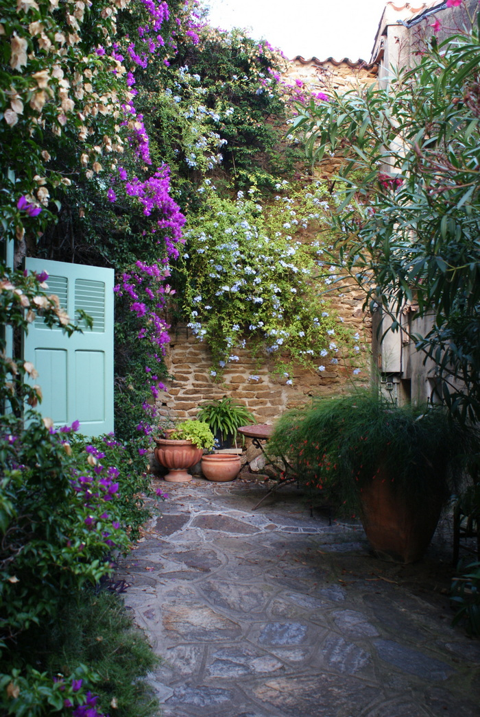 bormes mimosas travel guide francinesplaceblog