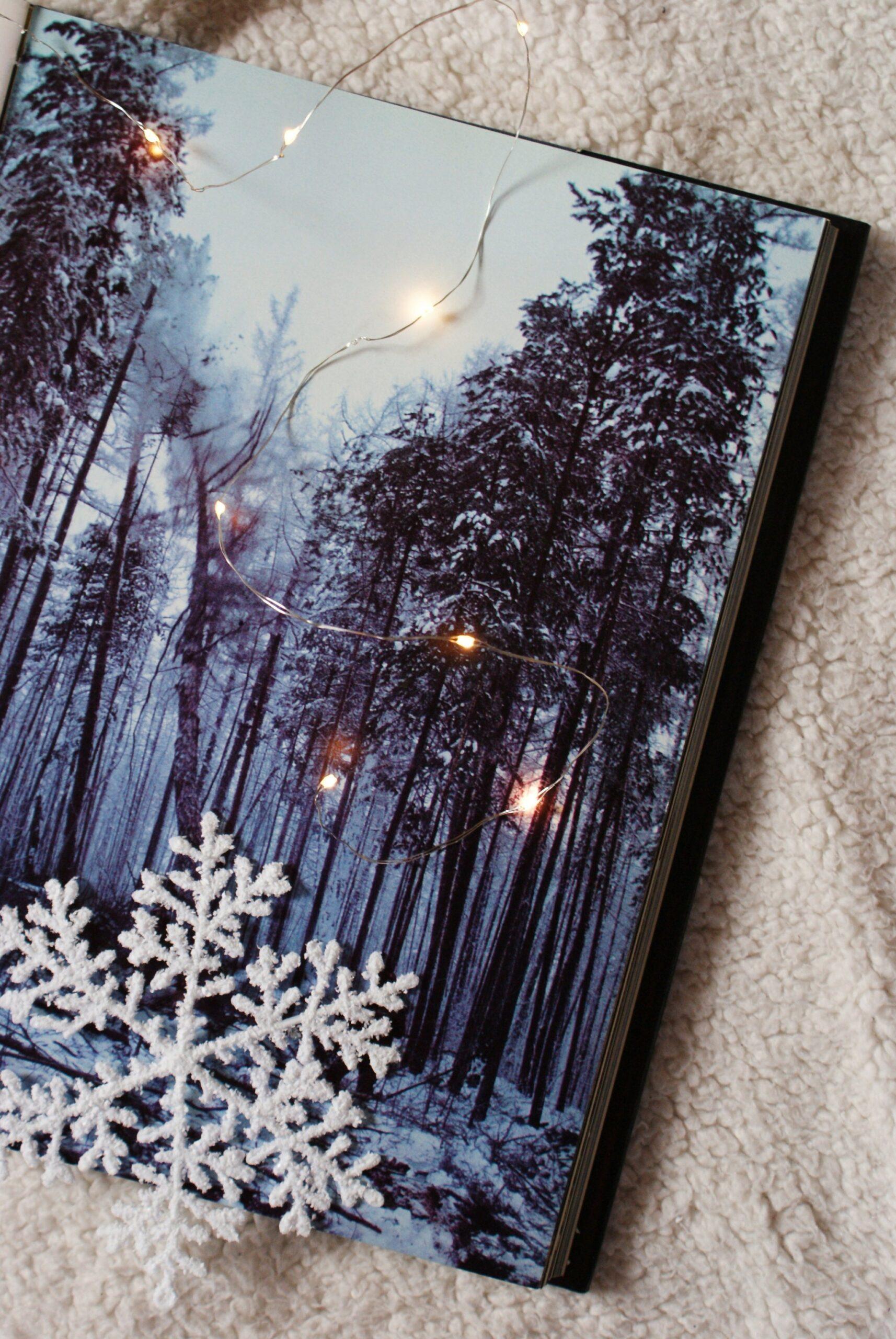 russia winter trip travel siberia