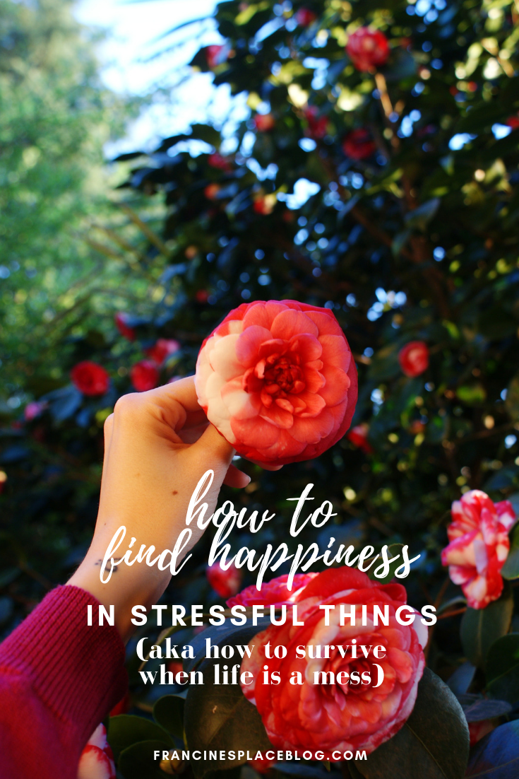 how find happiness stressful moments life mess health tips francinesplaceblog