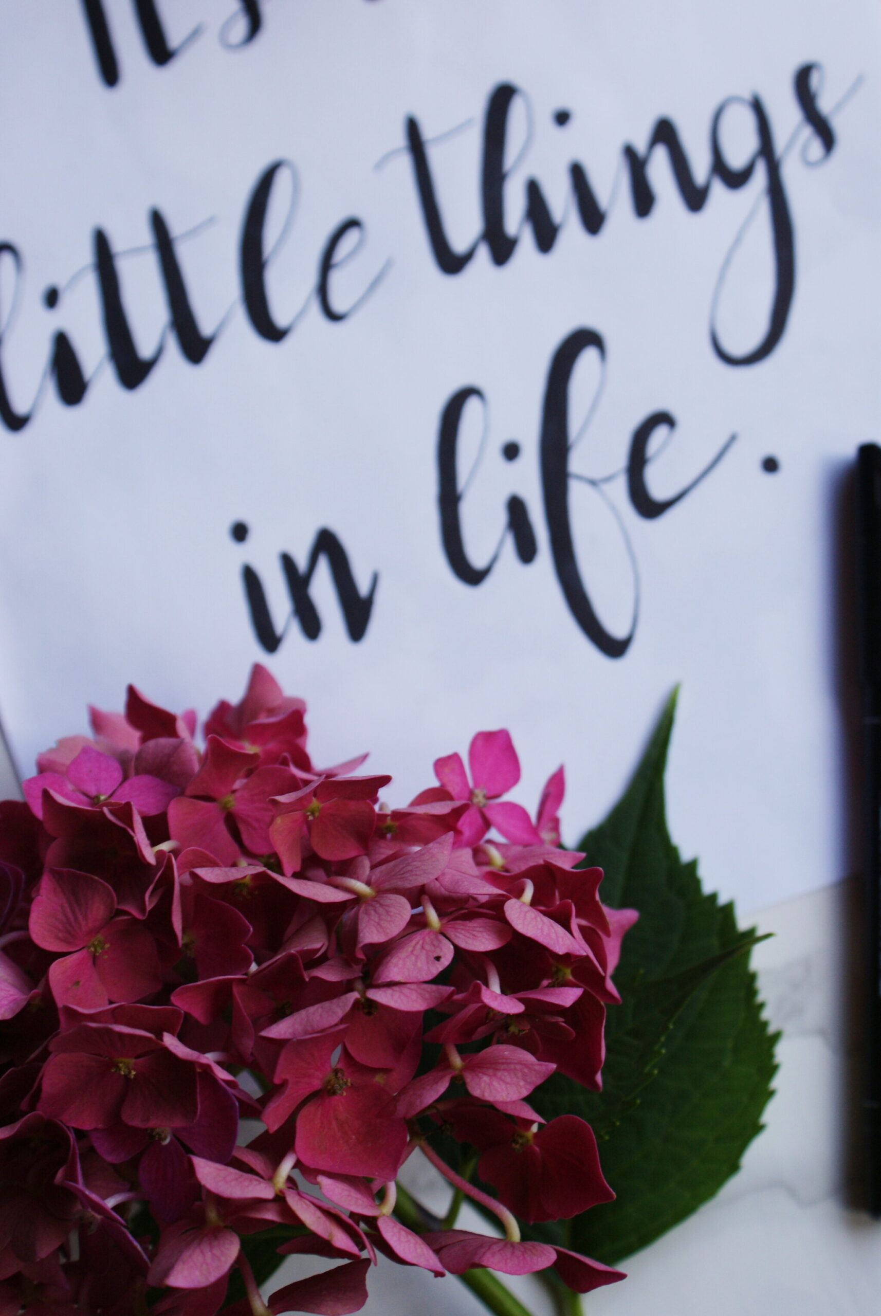 one day hand lettering guide course beginners