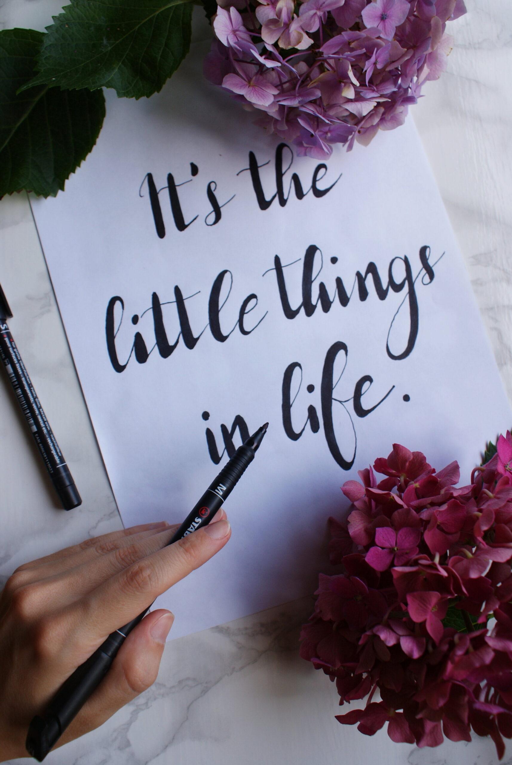 corso guida calligrafia scrittura principianti giorno facile