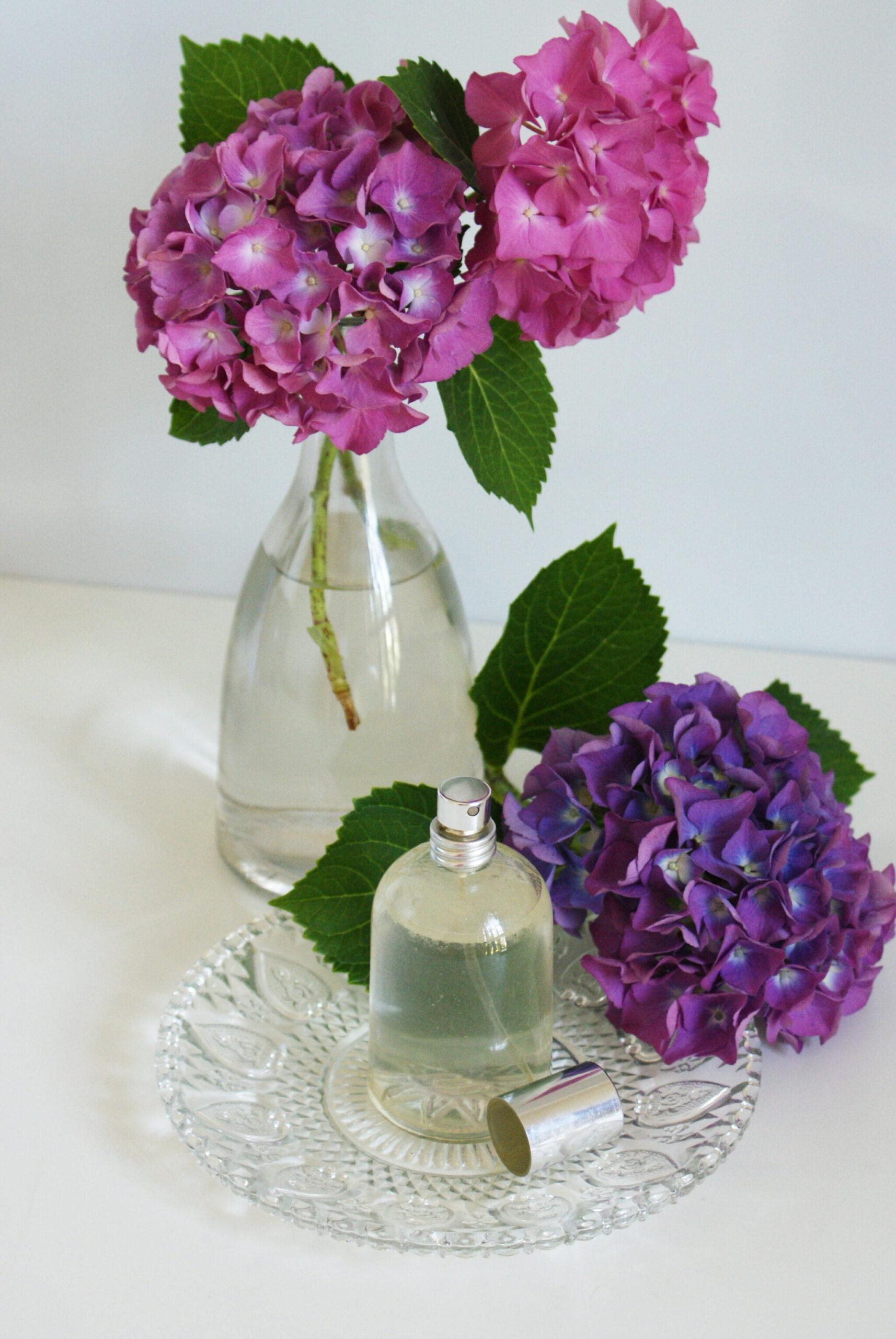 trattamento capelli spray naturale homemade fai da te ricetta olio cocco idratante facile veloce francinesplaceblog