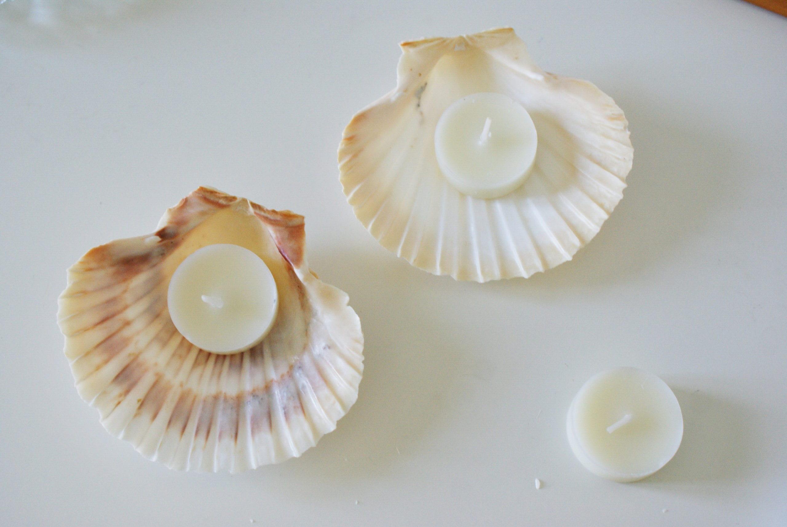 diy sea shell candles ultimate easy quick tutorial how make home decor aesthetic candele conchiglia conchiglie fai da te casa come fare