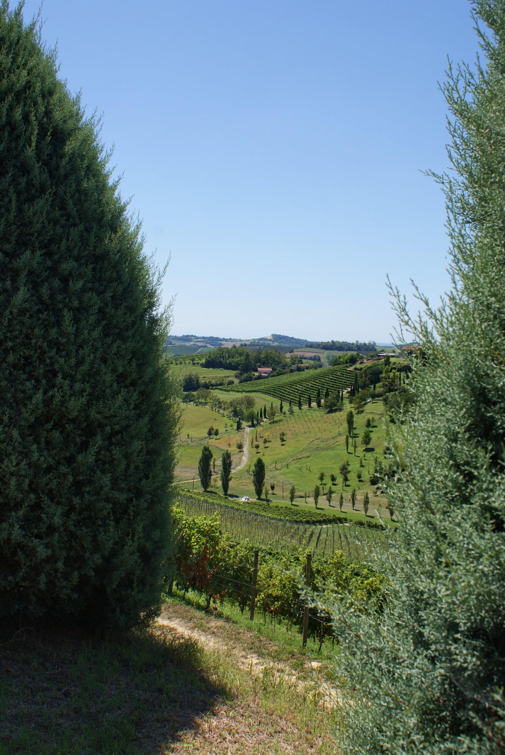 monferrato travel guide piemonte italy piedmont tips eat see do guida viaggio vedere mangiare fare turismo tourism trip francinesplaceblog grazzano badoglio