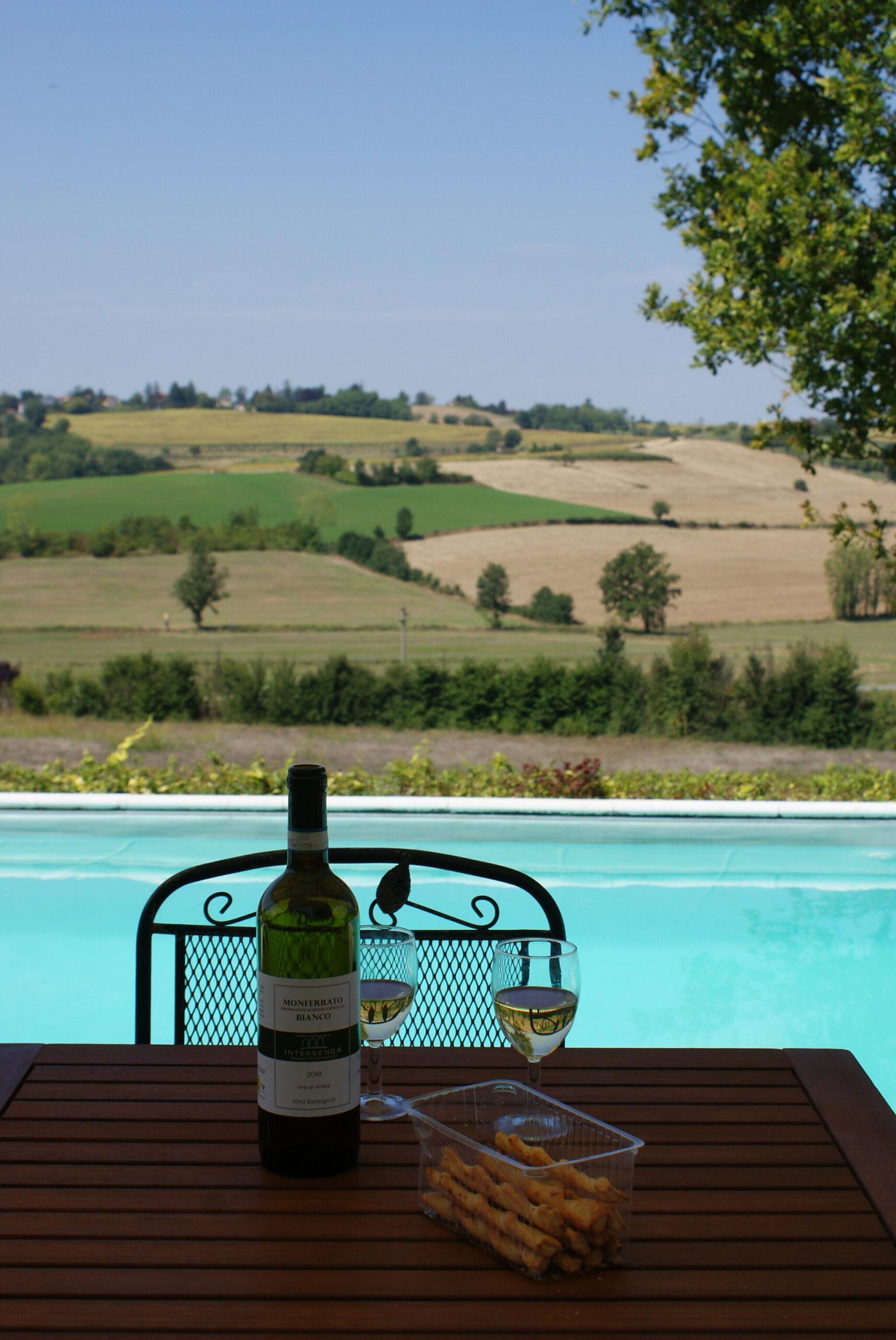 monferrato travel guide piemonte italy piedmont tips eat see do guida viaggio vedere mangiare fare turismo tourism trip francinesplaceblog vignale